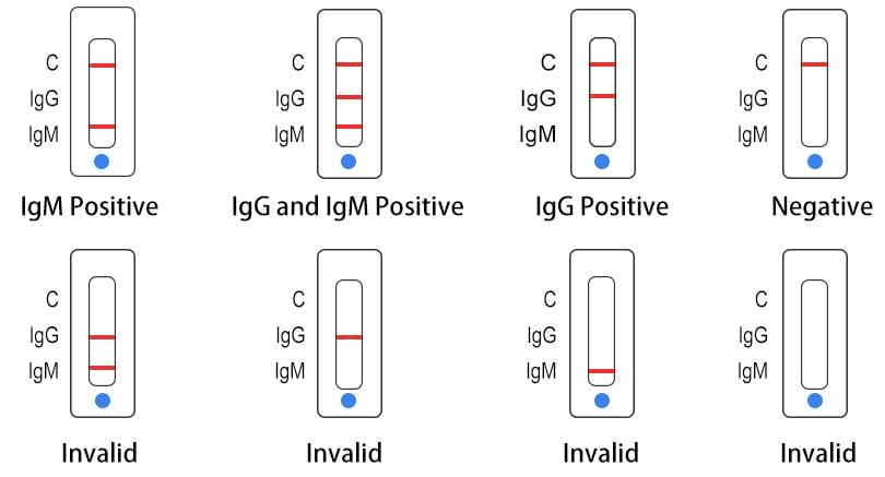 Koronavírus gyorsteszt Core COVID-19 (25 db/doboz) IgG/IgM